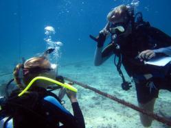 Ssi instructor course gili air manta dive resort gili air - Gili air manta dive ...