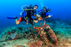PADI Advanced Open Water Diver Course Gili AIr